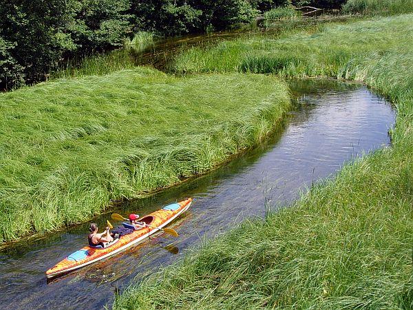 Rzeka Szeszupa