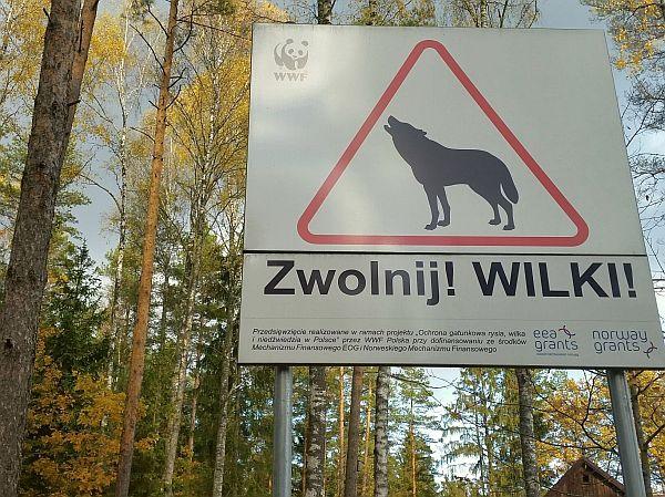 Takie o to znaki ostrzegawcze spotykamy w Puszczy Knyszyńskiej
