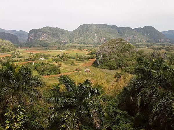 Dolina Viniales